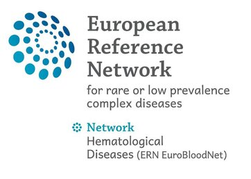 Apply now to the EuroBloodNet Preceptorships for health professionals on Aplastic Anaemia and Paroxysmal Nocturnal Hemoglobinuria!